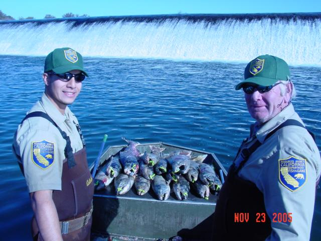 Fish and Wildlife Workers with Fish