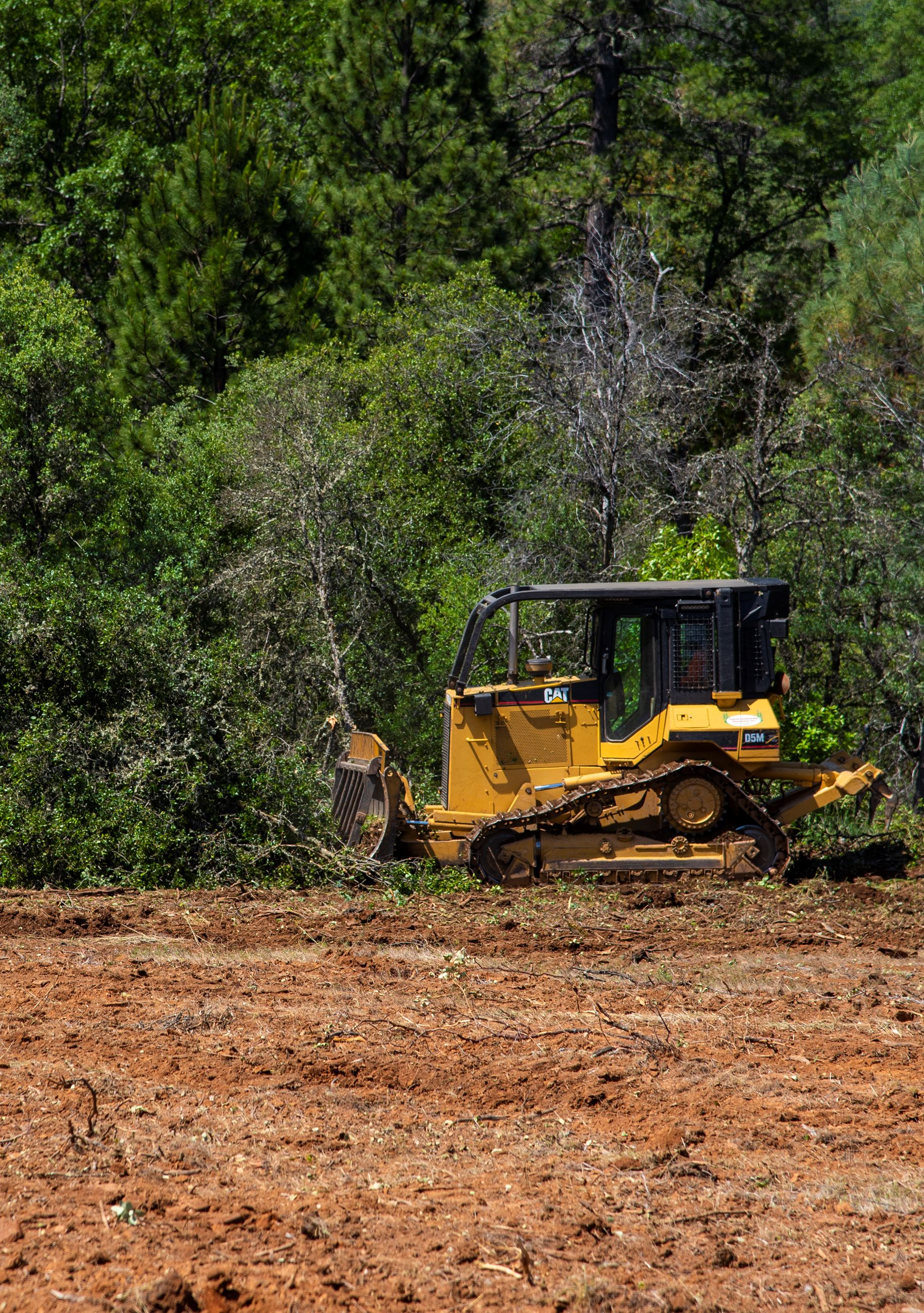 A tractor clears forest brush into piles