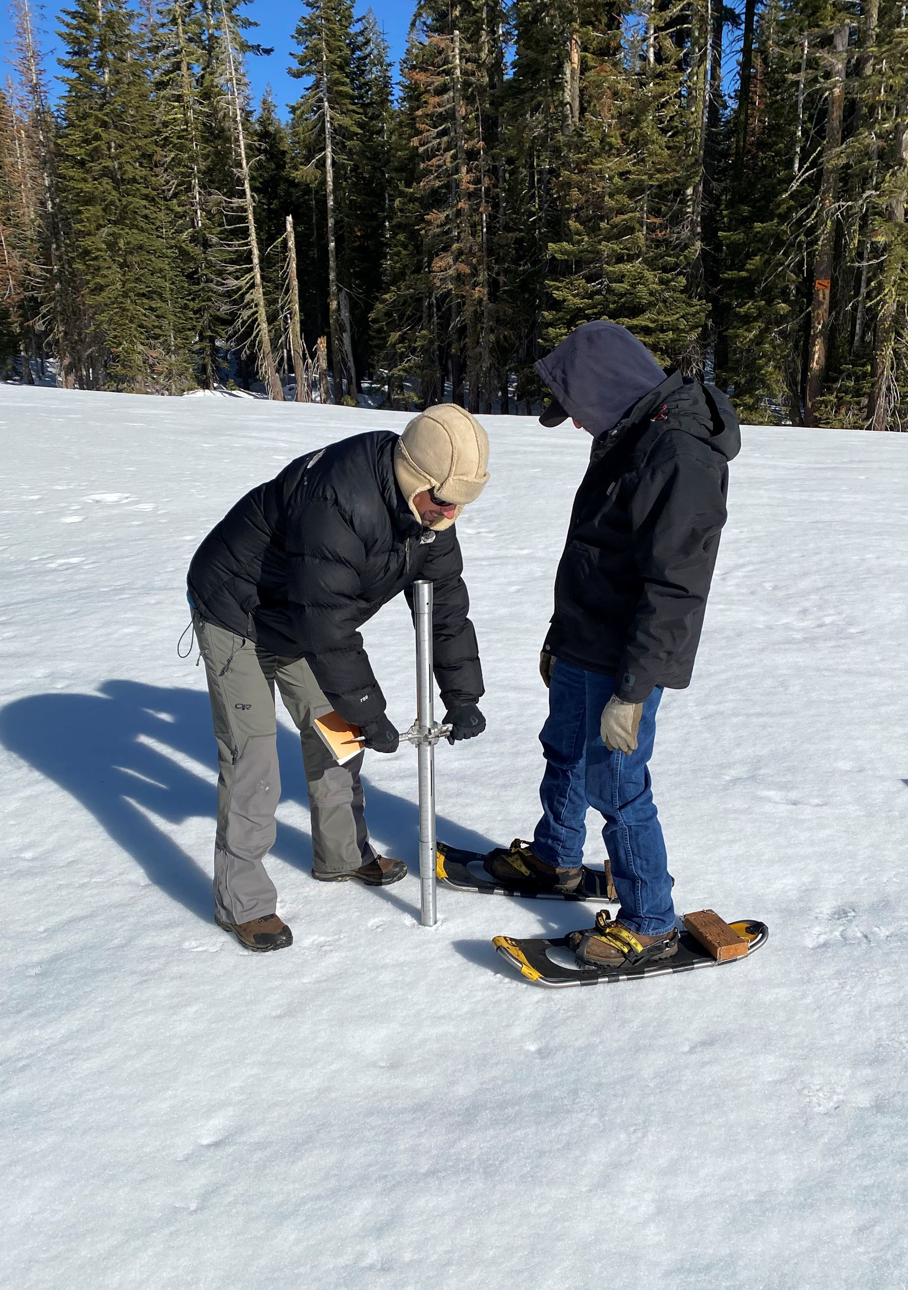 Two men take a snow sample with a metal pipe during a snow survey.